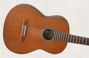 mua dan guitar classic o tphcm