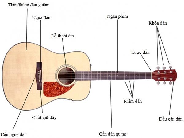 bo phan cua dan guitar