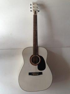 nhung cay dan guitar mau trang